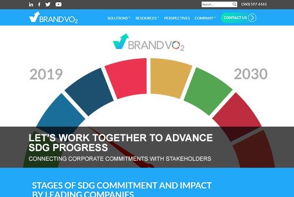 BrandVO2 Website